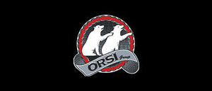 Orsi Group S.r.l.