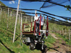 Lifting Platforms For Orchards Autolivellanti CROSS 120